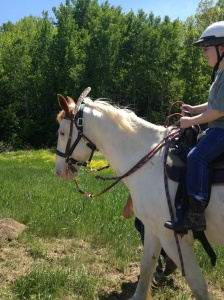 Eve on Buddy with a turkey feather in his bridle